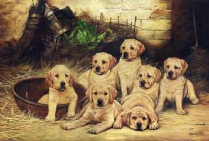 Yellow Labrador Pup Painting